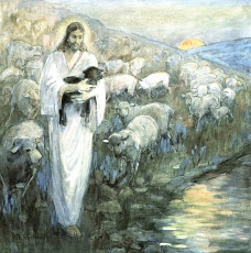 Jesus the Shepherd of Sheep
