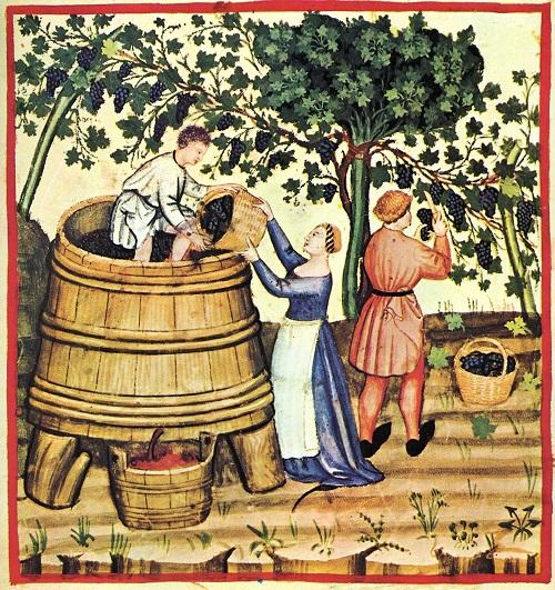 Treading the Winepress by Foot